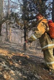 На месте пожара в Утрише продолжает работать МЧС