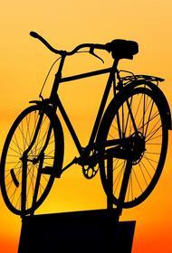 В Подмосковье водитель сбил полицейского, который ехал на велосипеде