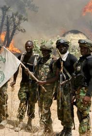 Нигерийские военные нанесли чувствительный удар по террористам из «Боко Харам»