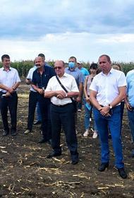 Как создать крепкую кормовую базу для животноводства, обсудили в ЗСК