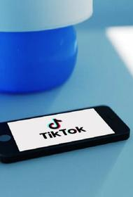 Эксперт считает, что реакция США на работу соцсети TikTok больше похожа на охоту на ведьм
