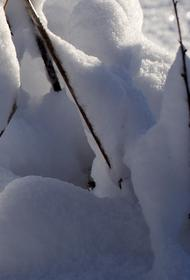 Эксперт-климатолог предсказывает морозную зиму в России