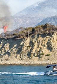 После пожара директор заповедника «Утриш» в Анапе пойдет по уголовной статье