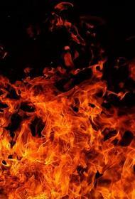 В Ростовской области загорелось садовое товарищество