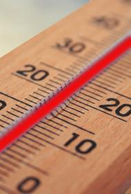 В Воронеже сегодня зафиксировали температурный рекорд