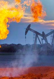 Экологическая катастрофа или добыча нефти, что выберет человечество?