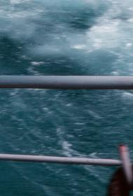 В Приморье ликвидируют последствия тайфуна  «Майсак»