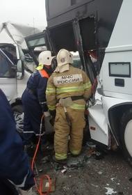 Ространснадзор проверит перевозчиков после столкновения автобусов под Анапой