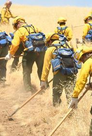 Калифорния задыхается в пожарах