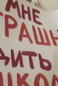 Пикеты против одноклассника. В Южно-Сахалинске третьеклассника перевели на заочное обучение из-за протестов родителей и детей