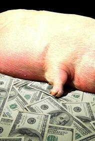 Продовольственной безопасности России угрожает неестественная монополия?