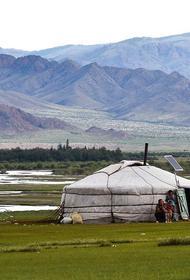 Роспотребнадзор сообщил, что риска попадания чумы из Монголии в Россию нет