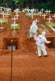 Коронавирусная ситуация в Бразилии становится все сложнее