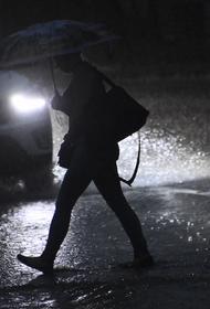 Синоптик сообщила о прохладной погоде с небольшим дождем в среду в Москве