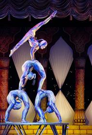 В России снизилась численность зрителей на цирковых представлениях