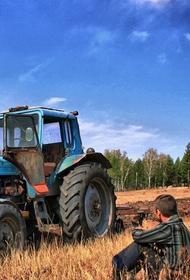 Накануне дня голосования  пайщики СПК «Колос» Краснодарского края проведут санкционированный пикет