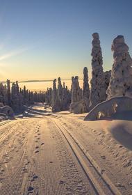 Премьер-министр Финляндии рассказала о условиях въезда в страну
