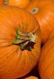 Диетолог Михаил Гинзбург назвал тыкву осенним продуктом для похудения