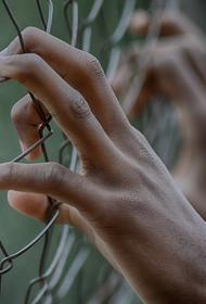 В Словении девушка лишилась руки ради страховки и села в тюрьму на два года