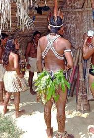 В Бразилии индейцы застрелили из лука ученого