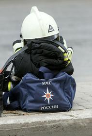 На избирательном участке в Воронежской области произошел пожар