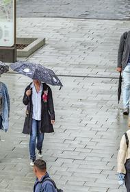 Синоптик Синенков предупредил москвичей о дожде и прохладной погоде в понедельник
