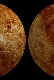 Глава NASA прокомментировал  обнаружение признаков жизни на Венере
