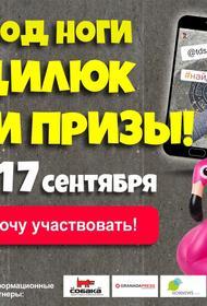 В Челябинске стартовал квест на поиск креативных канализационных люков