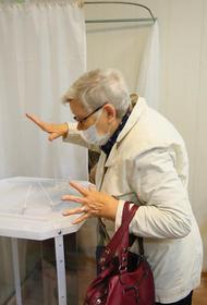 Малые партии назвали конкурентными выборы в Челябинской области