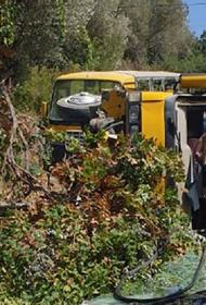 В Турции в ДТП с двумя автобусами пострадали российские туристы