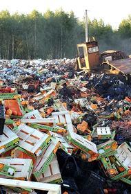 Большинство россиян против уничтожения санкционных продуктов