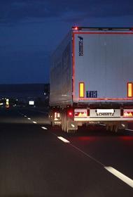 После запрета Лукашенко на российских дорогах фур из Польши и Литвы стало меньше