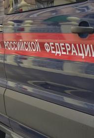 В Подмосковье 20-летняя мать самовольно захоронила маленького сына