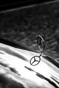 Вооруженный мужчина отобрал у студента коробку с кроссовками и скрылся на автомобиле Mercedes