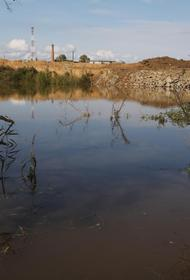 Хабаровские селяне потеряли 60 млн рублей из-за паводка
