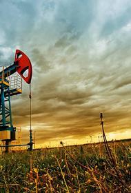 Найден способ переработки нефти без вреда для атмосферы