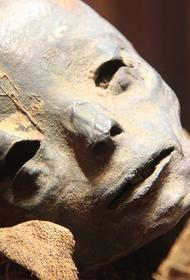 Мумию мужчины нашли в сарае в Подмосковье