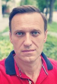 МВД сообщило о продолжении проверки по факту инцидента с Навальным, опрошено около 200 человек