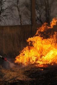 В Карачаево-Черкесии ввели режим ЧС из-за растущей площади лесного пожара