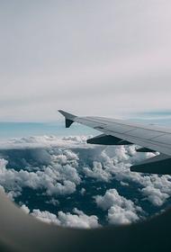 Летевший в Москву из Екатеринбурга пассажирский самолет столкнулся с птицами