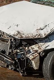 В Нижегородской области двое мужчин погибли в ДТП