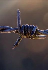 Из дагестанской колонии сбежали шестеро заключенных
