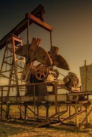 Чад отказался от звания «великого наследия» из-за нефти