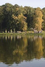 Научный руководитель Гидрометцентра Вильфанд сообщил, что москвичей ждут жаркие выходные