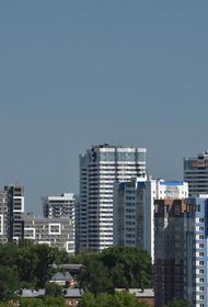 В Новосибирске задержали главу городского комитета по рекламе