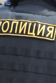 Московская полиция проверяет информацию о нападении на семью в ТиНАО