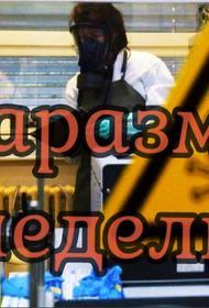 Маразмы недели: о«чудесном» выздоровлении Навального,  мэр серой плитки и Виссарион за решёткой