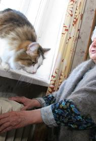 Собянин поручил досрочно начать отопительный сезон из-за домашнего режима для пожилых