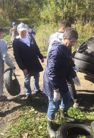 Общественники навели порядок в питомнике Лукашова в Хабаровске