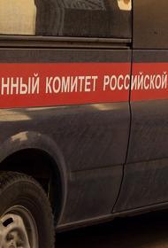 Пропавшая в Свердловской области трёхлетняя девочка найдена мертвой